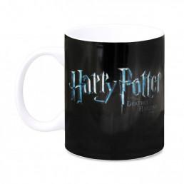 Mug Harry Potter vs Voldemort