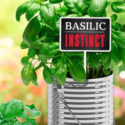 Plaque Métallique Basilic Instinct