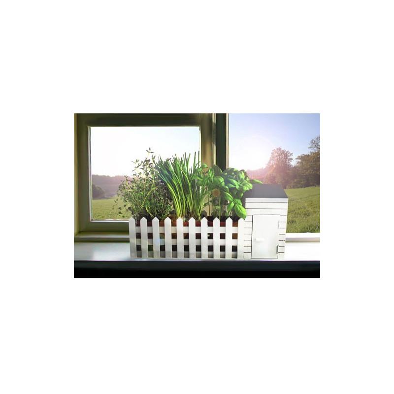 Offrez un jardin aromatique d 39 int rieur tous les for Jardin d interieur