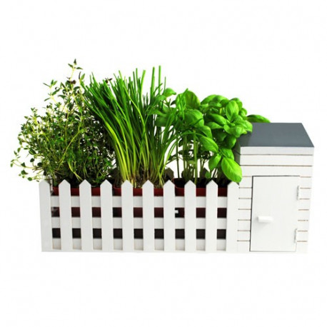 Devenez un véritable jardinier en vous entraînant avec ce kit de jardinage d'intérieur ! Agrémentez votre maison de plantes aromatiques qui, en plus de décorer vos plats, vont les parfumer !