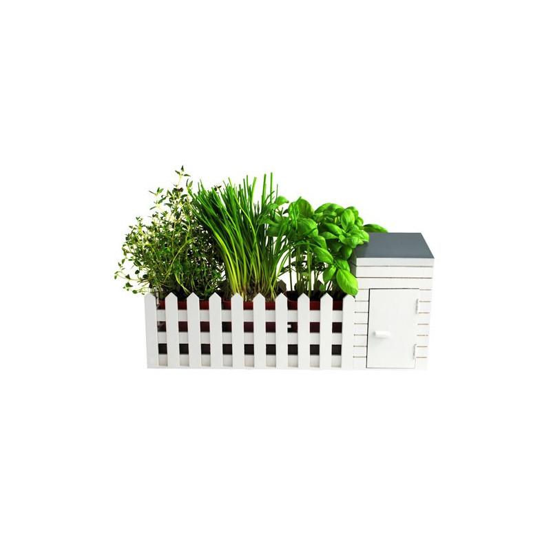 offrez un jardin aromatique d 39 int rieur tous les amoureux de la nature qui ne peuvent avoir de. Black Bedroom Furniture Sets. Home Design Ideas