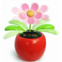 Fleur Solaire Dansante